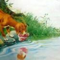 Anjing dan Bayangannya