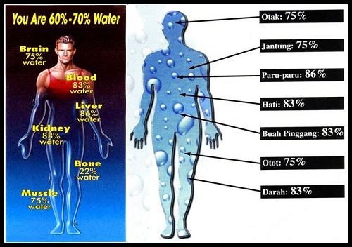 Ingin Tahu Manfaat Minum 10 Gelas Air Setiap Hari Mimbar Rakyat