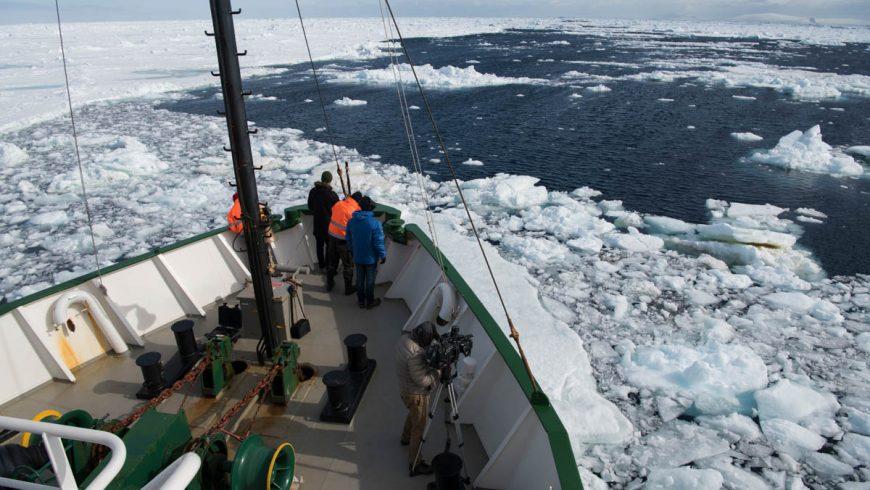 Kapal pemecah es Greenpeace, Arktik Sunrise, menjelajahi Laut Weddell. (Foto: Al Jazeera)