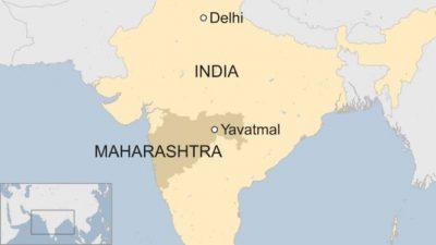 Distrik Yavatmal, salah satu wilayah hidupnya harimah di India. (Foto: BBC News)