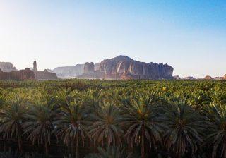 Kementerian Pariwisata menyebutkan bahwa pembatasan itu dirancang untuk melindungi warga negara, penduduk dan wisatawan. Itu sejalan dengan rekomendasi dari otoritas kesehatan. (Ilustrasi: Shutterstock/Arab News)