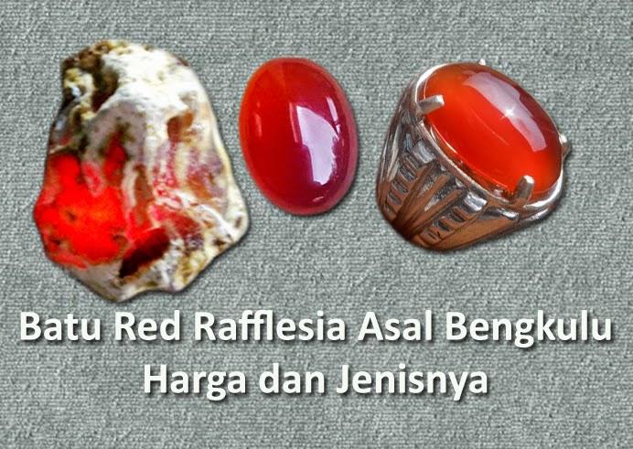 Batu Red Rafflesia Asal Bengkulu