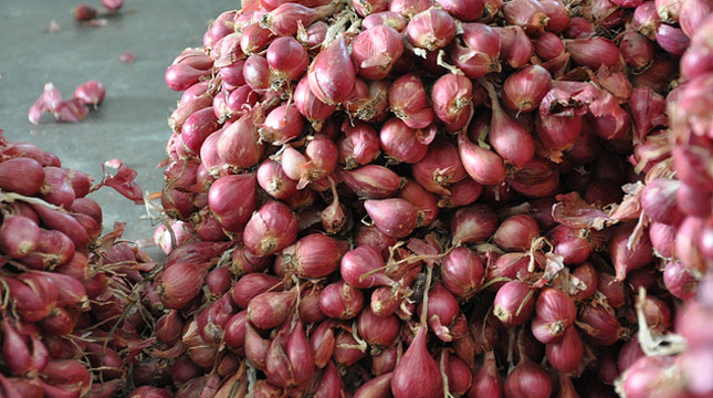 Bawang merah. (Ilustrasi jndustyi.co.id)